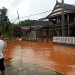 Kerusakan Lingkungan yang diduga akibat pertambangan di Kabaena