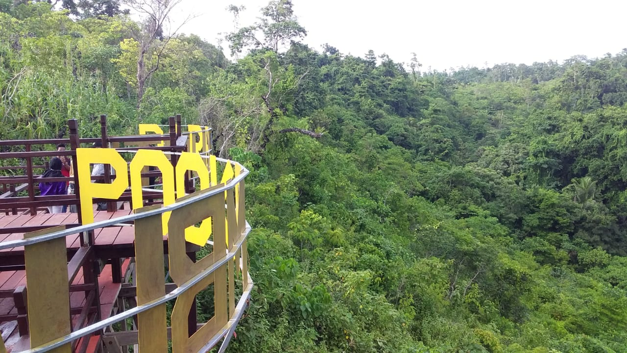 puncak Darakunti pookambua