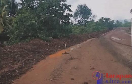 gambar : Jalan [hauling] PT. Trias Jaya Agung yang diduga melewati Kawasan Hutan