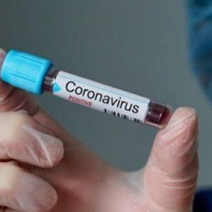 Ilsutrasi Corona Virus