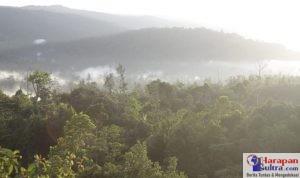 Pemandangan Puncak Gunung Tongkuno Raya